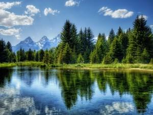 Прощение медитация прощения простить человека